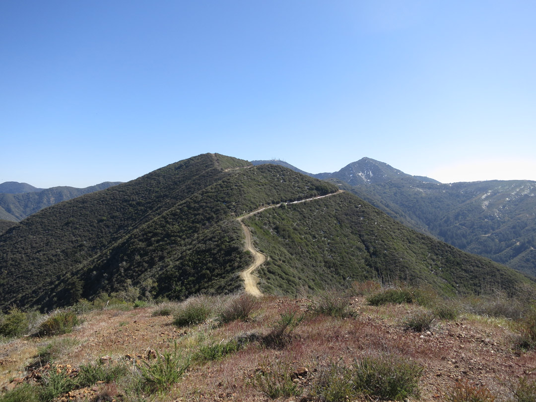 Bald Peak (and Bedford Pk) – Photo Gallery
