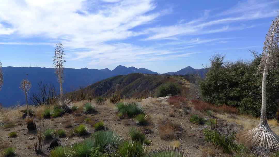 Mount Sally – Photo Gallery