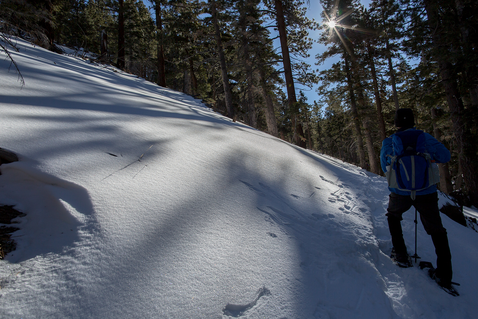 South Fork to Dry Lake Snow Shoe – Photo Gallery