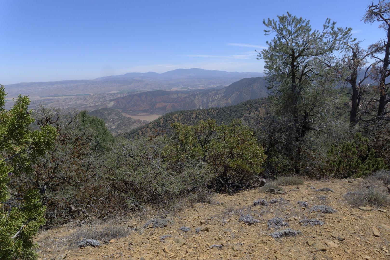 Fox Mountain – Photo Gallery