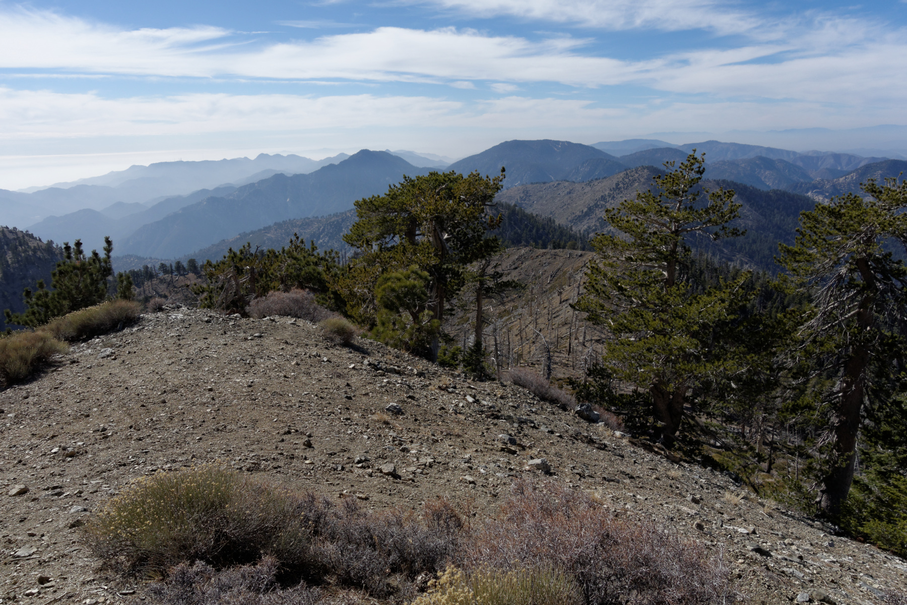 Copter Ridge, Throop Peak,  Mount Hawkins – Photo Gallery
