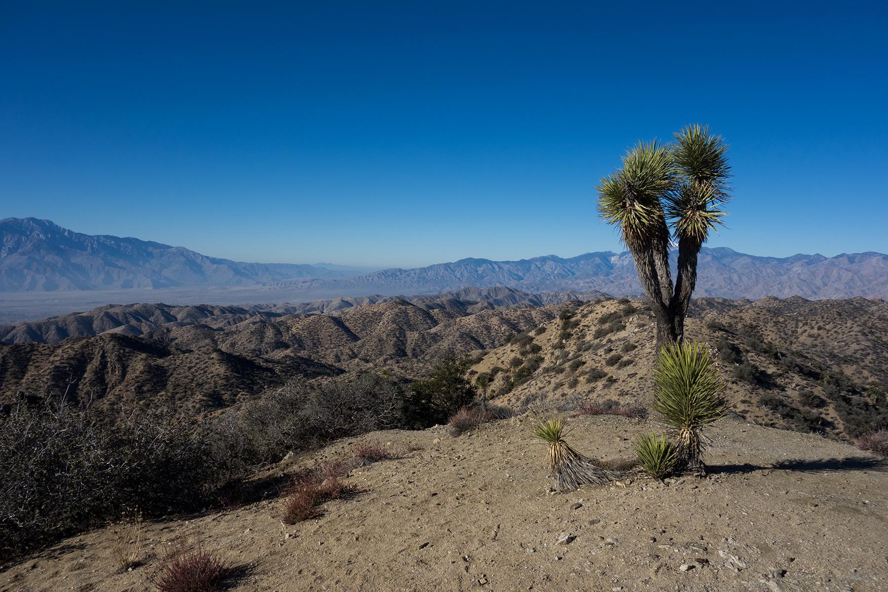 Eureka Peak – Photo Gallery