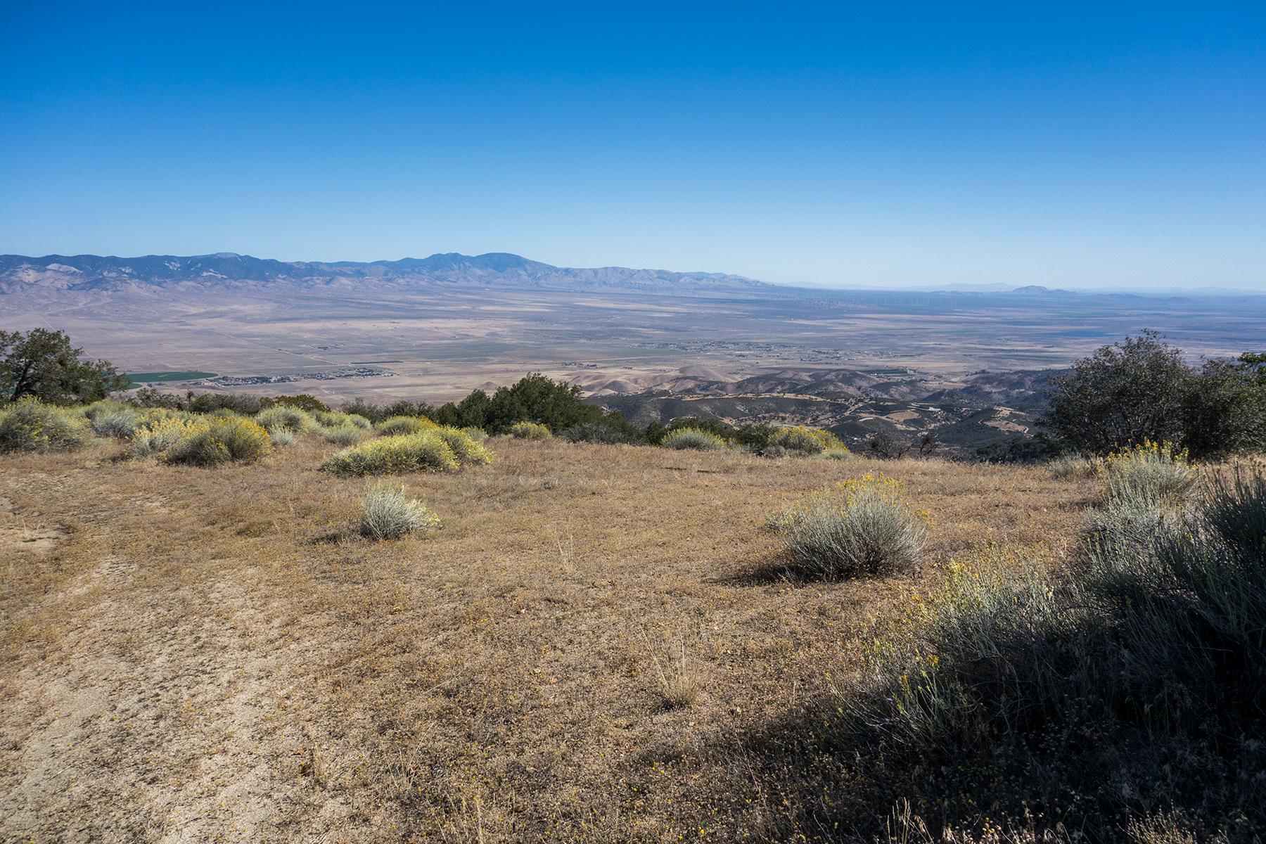 Liebre Mountain,  Liebre Mountain Ridge HP – Photo Gallery