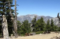 Cucamonga Peak, Flowing Creek – Trail Video